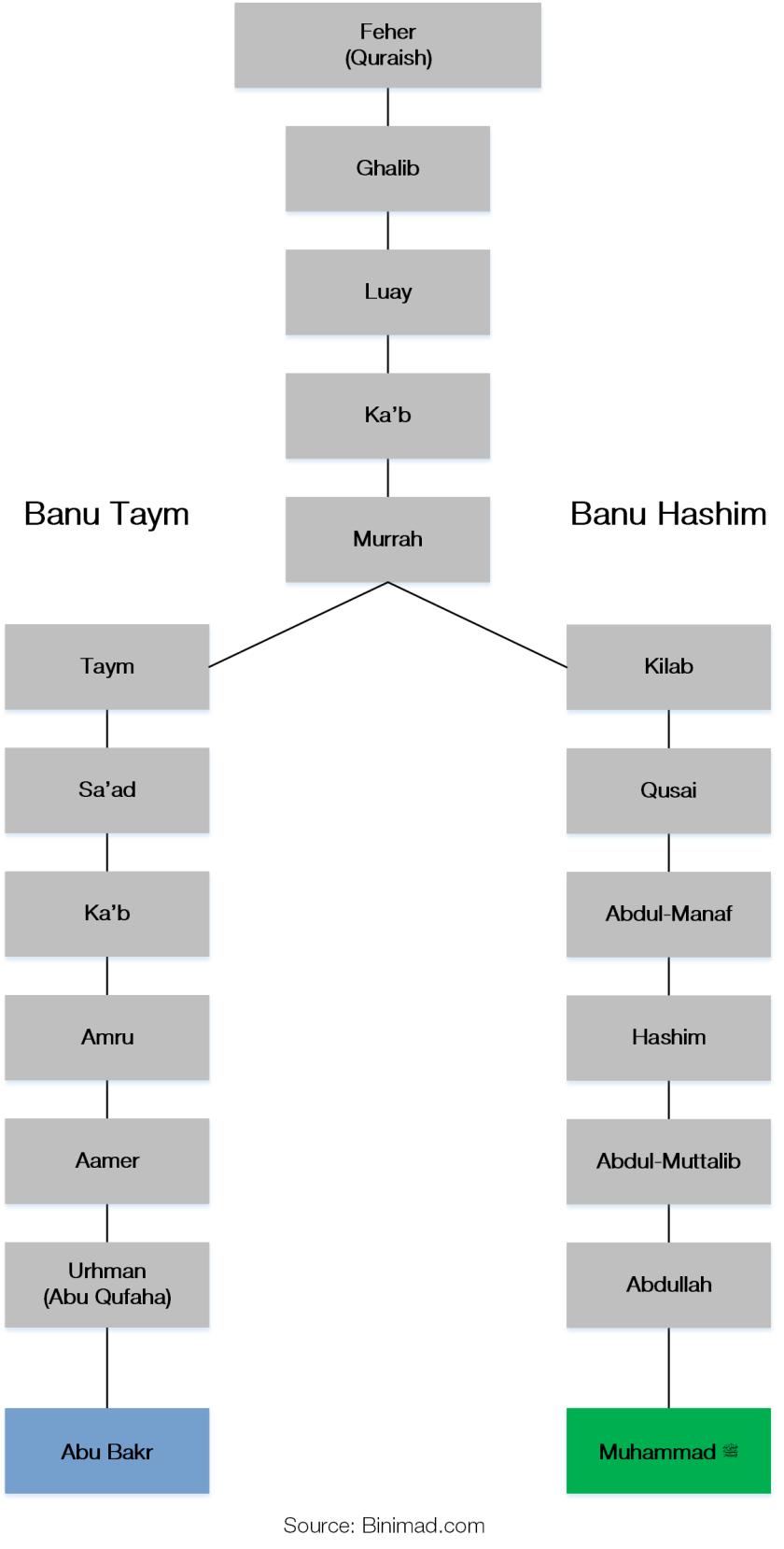 Abu Bakr family tree 1 0